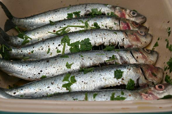 barbecued-sardines-raw