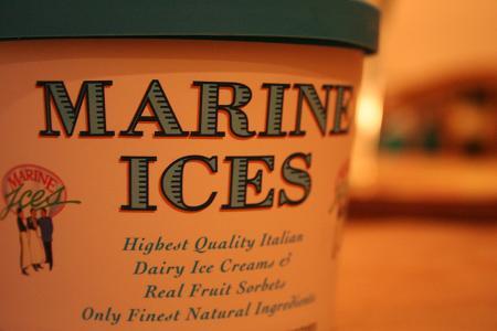 marine_ices.JPG