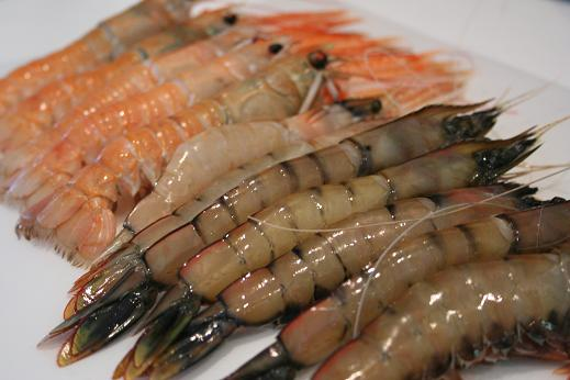 prawns_and_langoustines.JPG