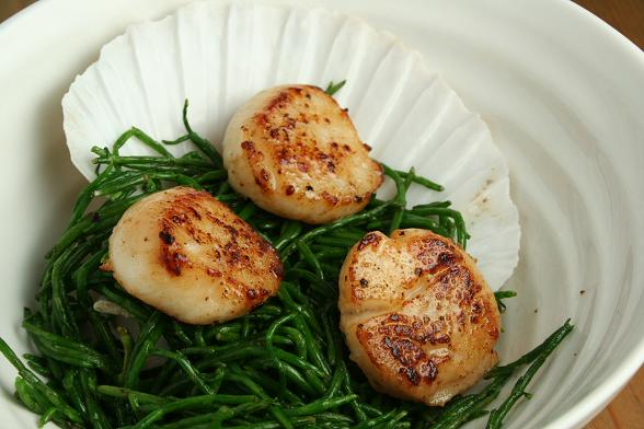 scallops-and-samphire